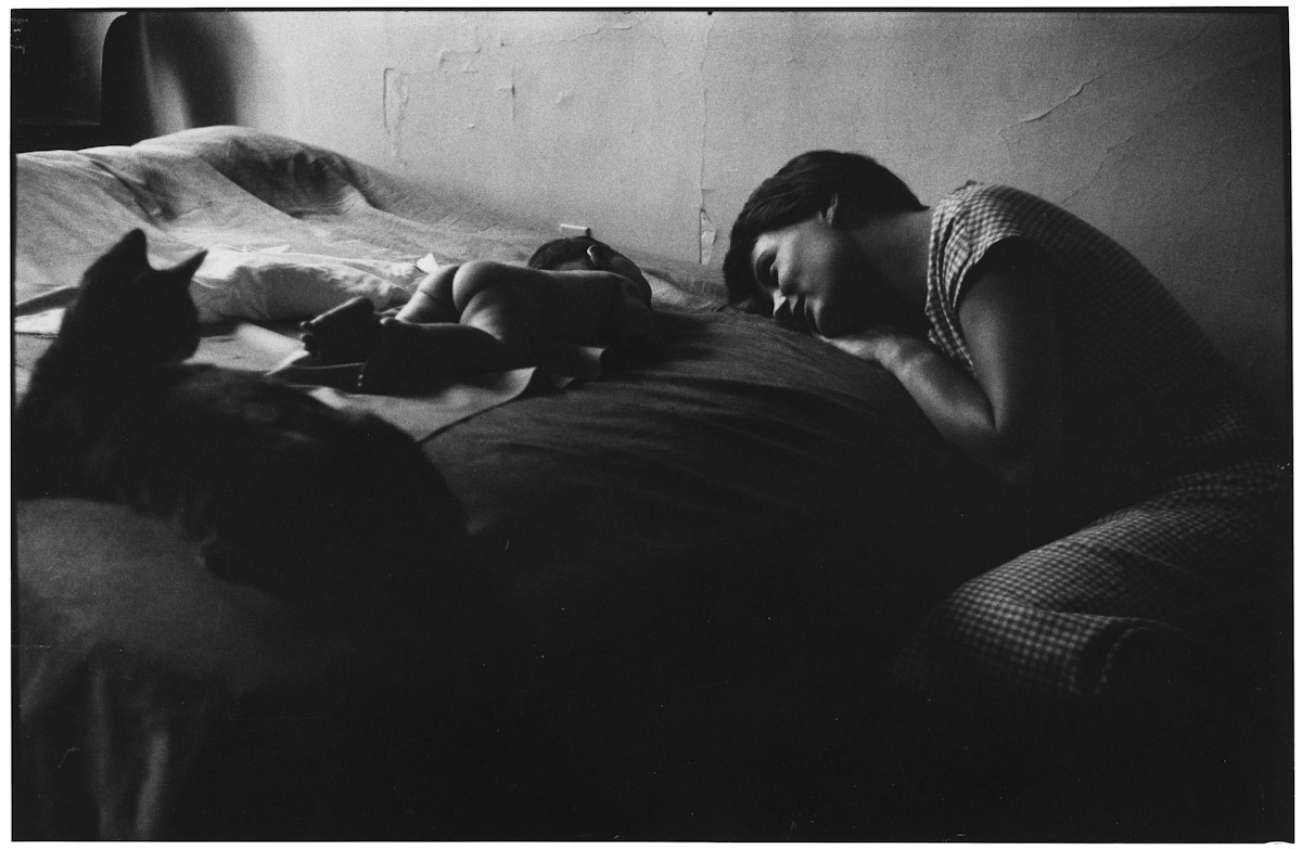 "Elliott Erwitt ""Homes around the world"""